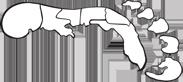 Coasties Logo
